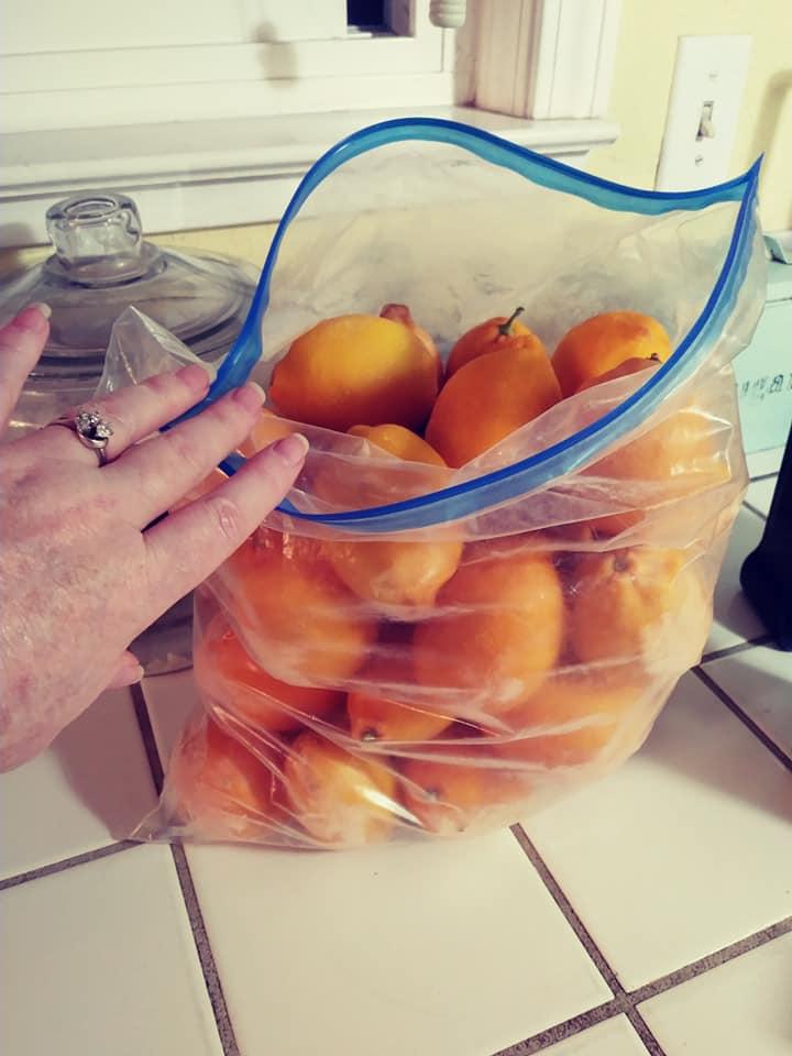 frozen whole lemons in a bag