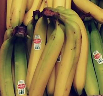 image of a bunch of bananas