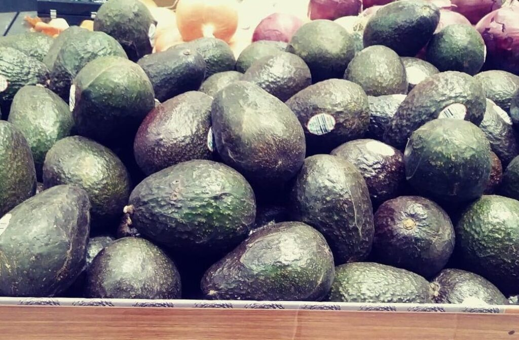 This image has an empty alt attribute; its file name is Avocados-Target-e1551734381735-edited-1024x671.jpg