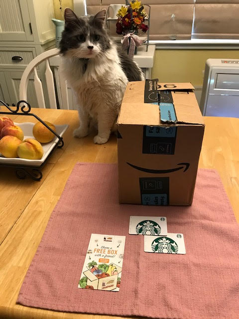 My cat Ace with box of mystery prizes