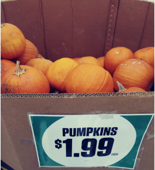 bin of pumpkins marked $1.99