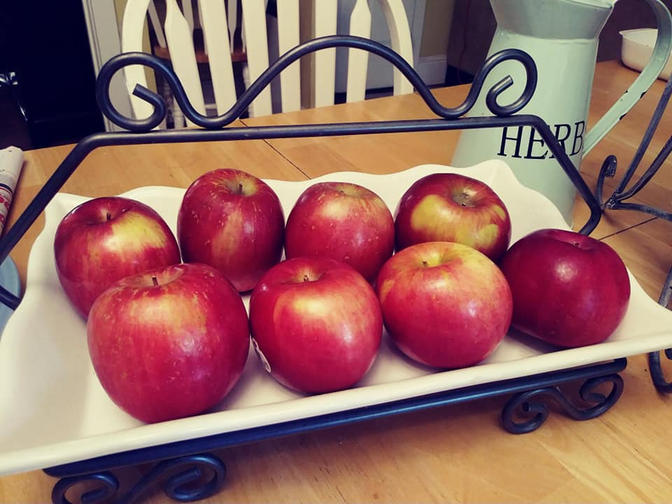 Fuji apples in a decorative tray on my dining table