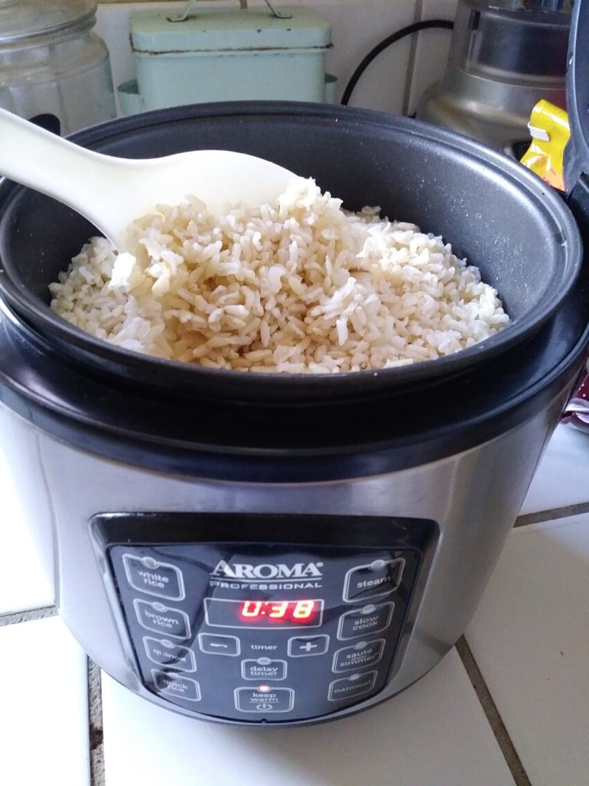 rice maker with brown rice