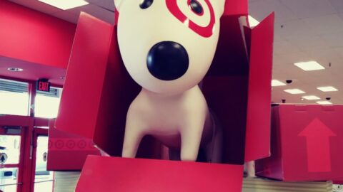 Target Dog in box