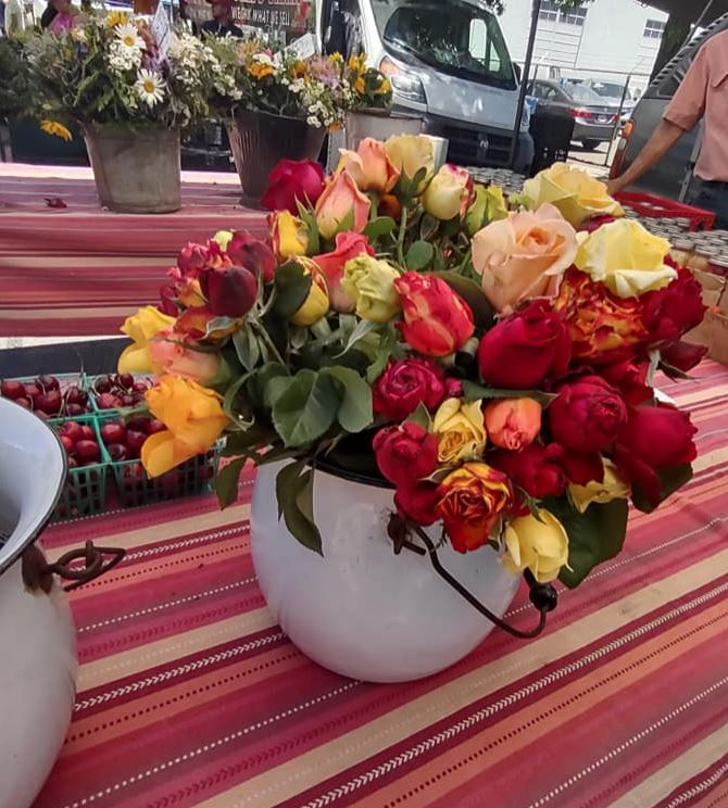 Roses at the Farmers Market in a white metal container