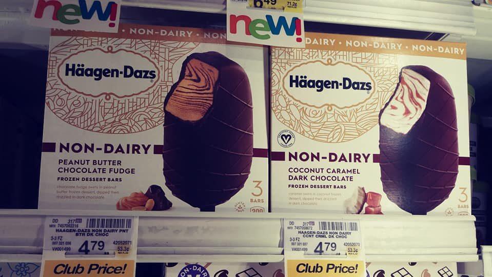 haagen dazs non-dairy bars
